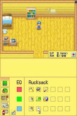 Harvest Moon DS.jpg (1)