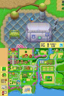 Harvest Moon DS.jpg (7)