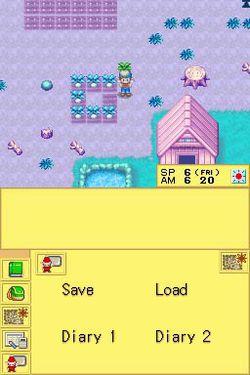 Harvest Moon DS.jpg (9)