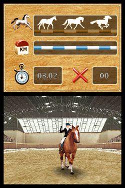 Horse Life   Image 3