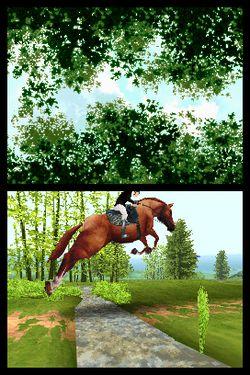 Horse Life   Image 5