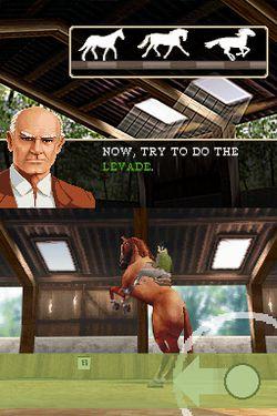 Horse Life   Image 6