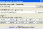 IDN Conversion Tool : convertir des noms de domaine