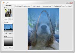 Image Inc screen1