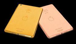 iPad mini or