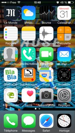 iPhone affichage gris (1)