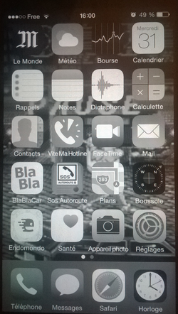 iPhone affichage gris (5)