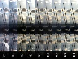 iPhone photo (2)