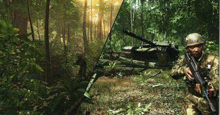 Jungle dans tous etats