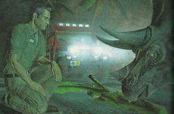 Jurassic Park - Image 5