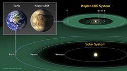 Kepler 186 f 1