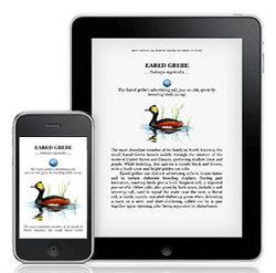 Kindle iPhone iPad