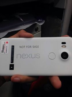 LG Nexus 5 image