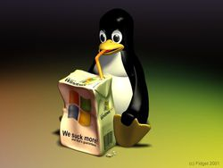 Linux contre windows