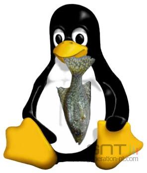 Linux poisson