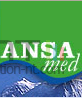 Logo ansamed