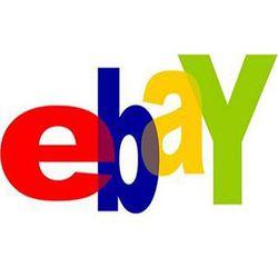 Logo eBay Pro