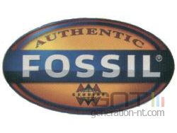Logo fossil small