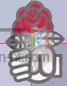 Logo ps metz