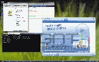 Longhorn interface 8