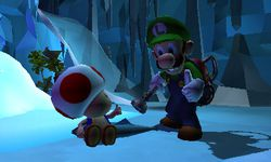 Luigi's Mansion 3DS (5)