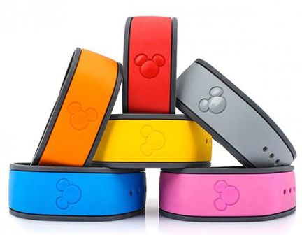 Magic Band disney 2