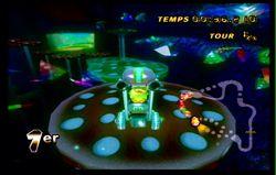 Mario Kart Wii (39)
