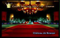 Mario Kart Wii (58)