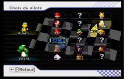 Mario Kart Wii (65)