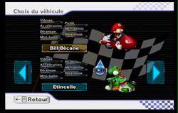 Mario Kart Wii (66)