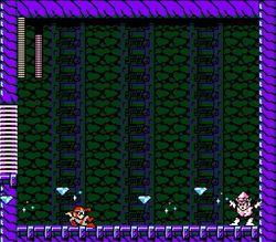 Mega Man 9   Image 12
