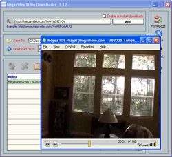 Megavideo Video Downloader screen