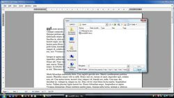 Microsoft Word Viewer screen2