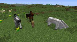 Minecraft 1.6 - 4