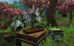 Mists of Pandaria (17)