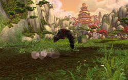 Mists of Pandaria (8)