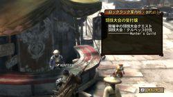 Monster Hunter 3 - 10
