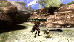 Monster Hunter 3 - 9
