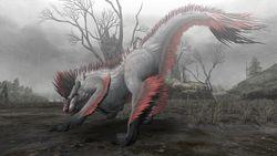 Monster Hunter Frontier Online - 12