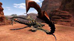 Monster Hunter Frontier Online - 17
