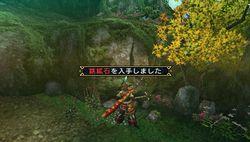 Monster Hunter Portable 3rd - 15