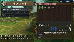 Monster Hunter Portable 3rd - 21