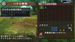 Monster Hunter Portable 3rd - 24