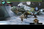 Monster Hunter Portable 3rd - 4