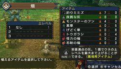 Monster Hunter Portable 3rd - 7