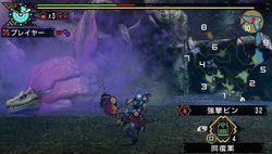 Monster Hunter Portable 3rd - 9