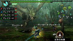 Monster Hunter Portable 3rd HD (3)