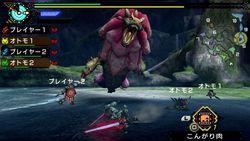 Monster Hunter Portable 3rd HD (7)