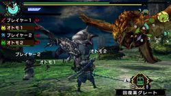 Monster Hunter Portable 3rd HD (8)