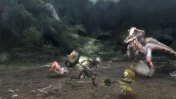 Monster Hunter Tri (10)